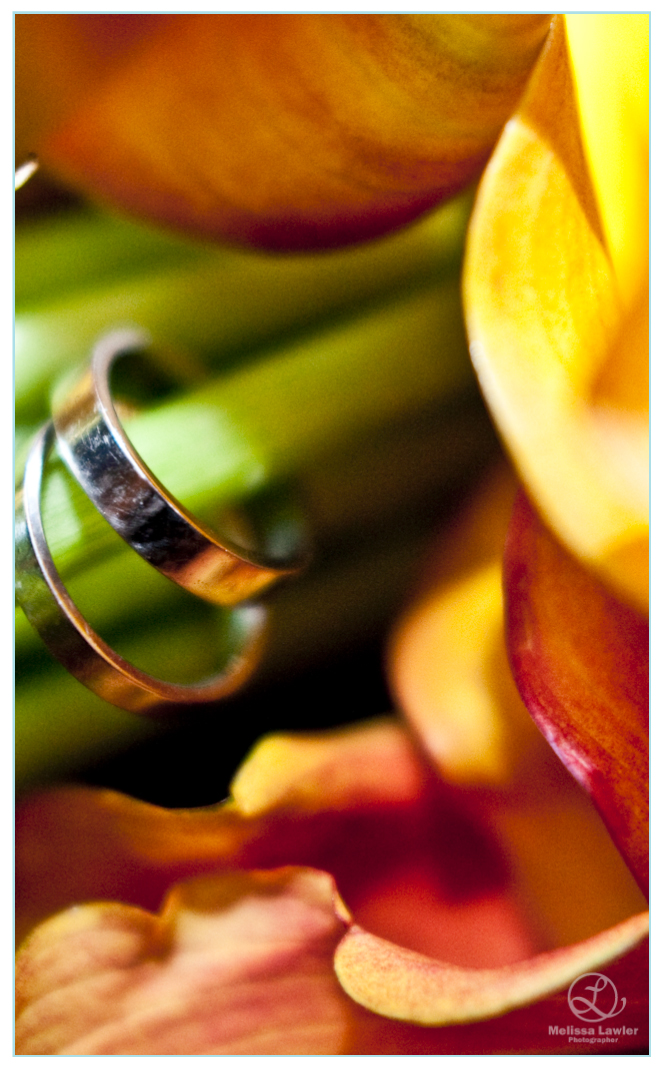 indiana university wedding rings and flowers